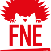 FNE 90